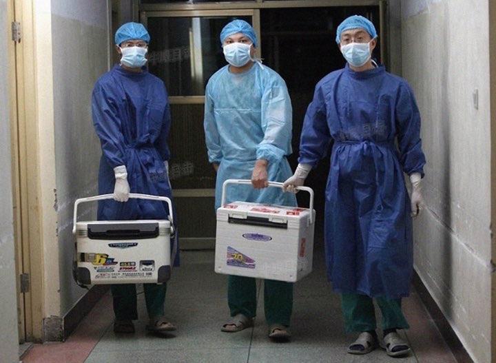 2012年8月16日,河南省某醫院的醫生手持待移植的新鮮器官。(搜狐網網頁截圖)