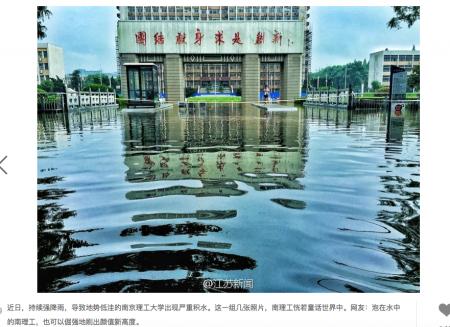 南京理工大學暴雨之後變成汪洋。校園成夢幻森林。(網路圖片)