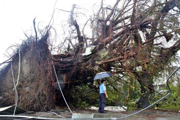 颱風重創台東 行政院撥8億台幣救災