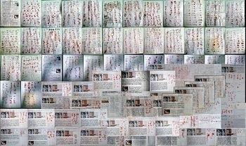 保定、秦皇島、張家口5,038人簽名反對中共活摘法輪功學員器官。(明慧網)