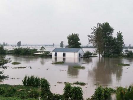 不少房屋和農作物被洪水淹浸。(網絡圖片)