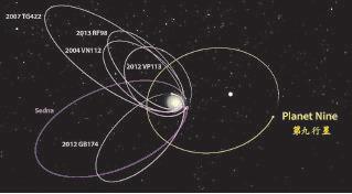 研究人員認為,第九行星(橙色軌道)的引力導致部份古柏帶天體(紫色軌道)以垂直於第九行星軌道的奇特高橢率軌道運行。(加州理工學院圖片)