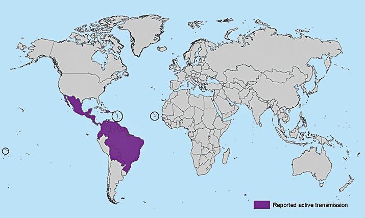 紫色地區為寨卡病毒主要傳播區。(翻攝美國疾病管制暨預防中心網站)