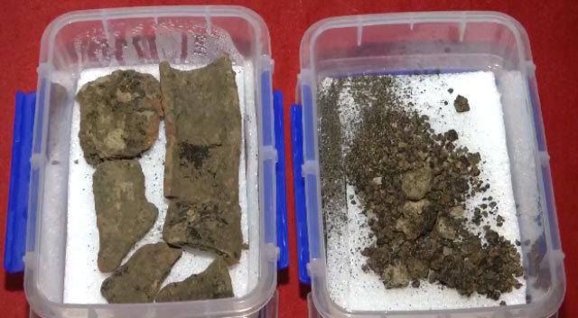 西安發現二千八百年前小麥 或將修改歷史課本