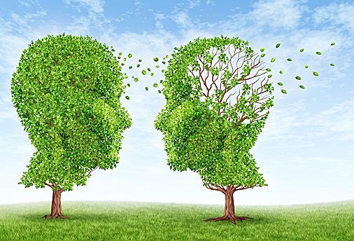 研學第二種語言 究可防老年癡呆