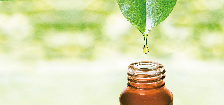 7種天然精油 緩解疼痛與焦慮