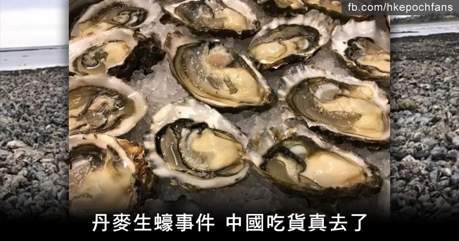 丹麥生蠔事件 中國吃貨真去了