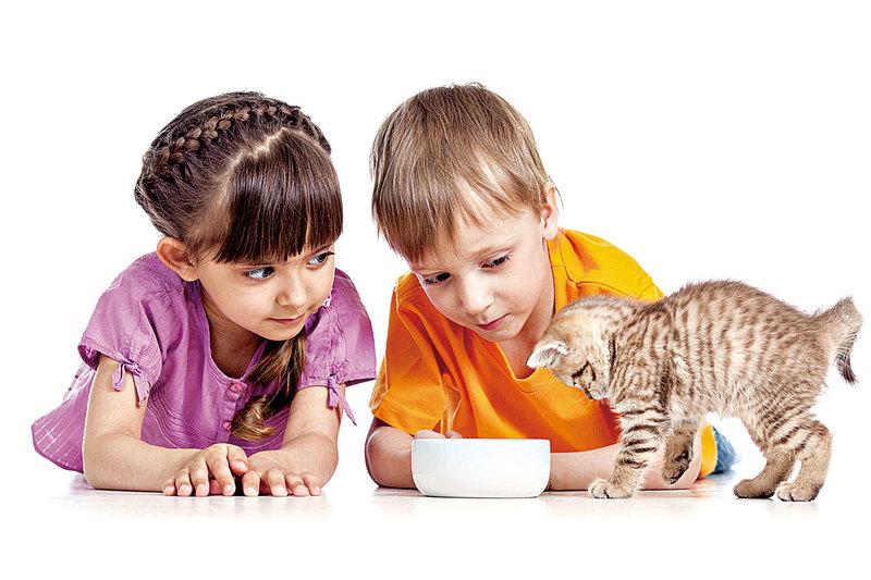 做家事能讓孩子體驗責任與成就感