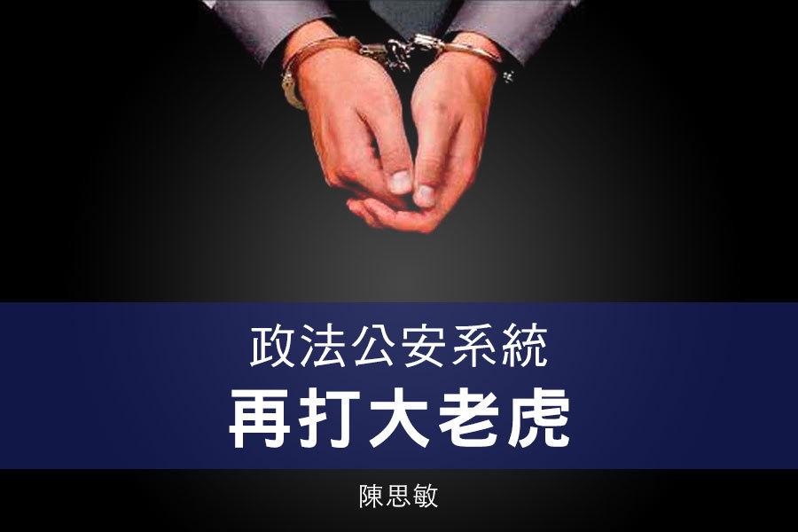 陳思敏:政法公安系統再打大老虎