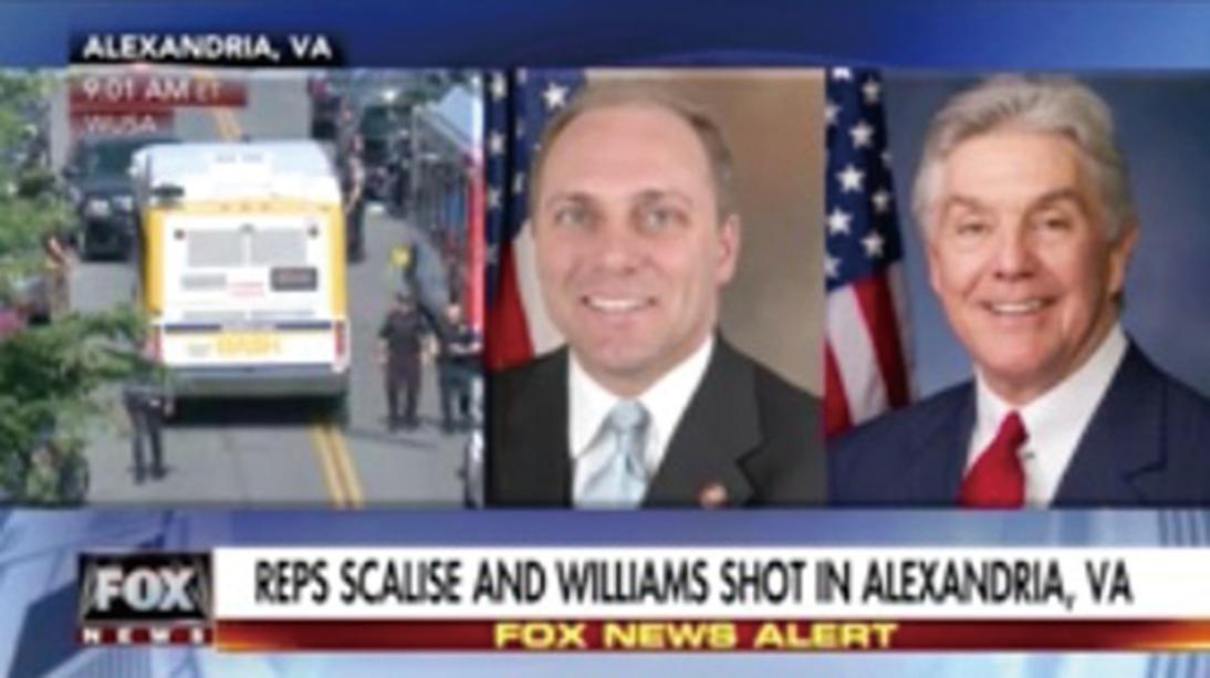 美兩共和黨政治家遭槍擊