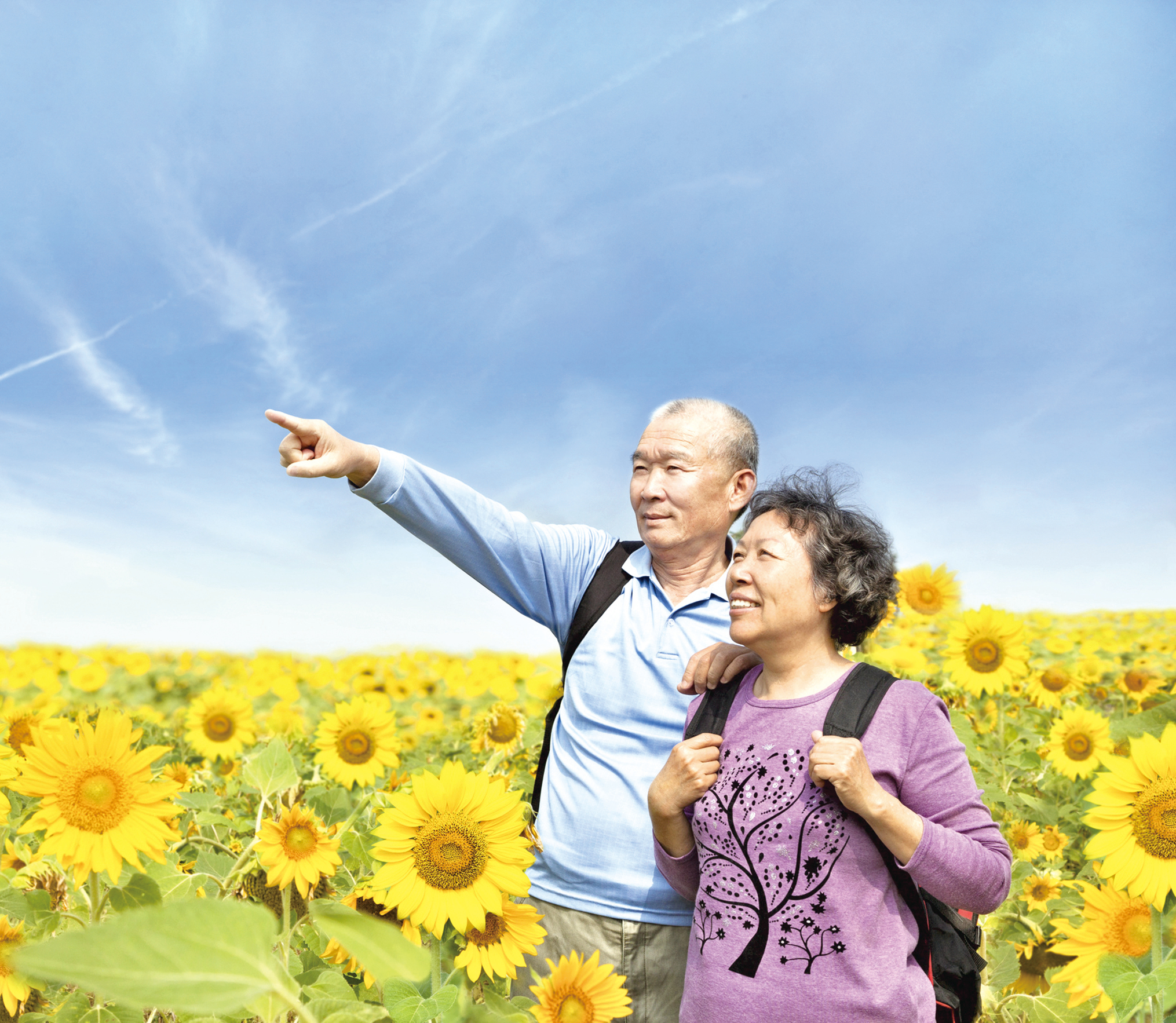 日本人長壽的秘密其實很簡單
