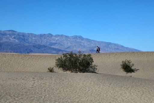徹底體驗高溫 遊客湧向美國最熱的死亡谷