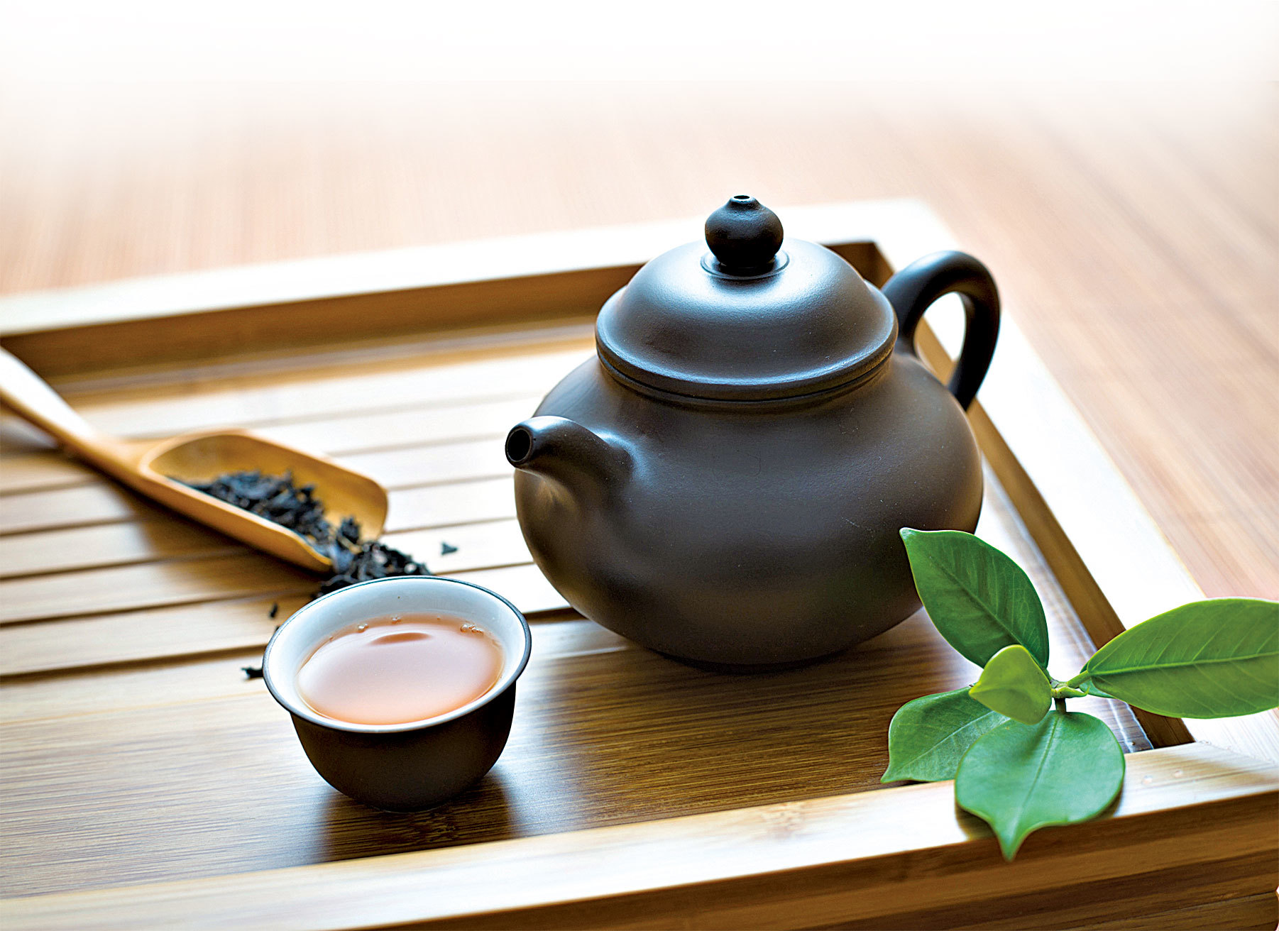 泡出好茶「茶人」教您掌握關鍵
