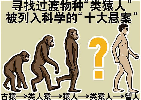 滿身是洞進化論
