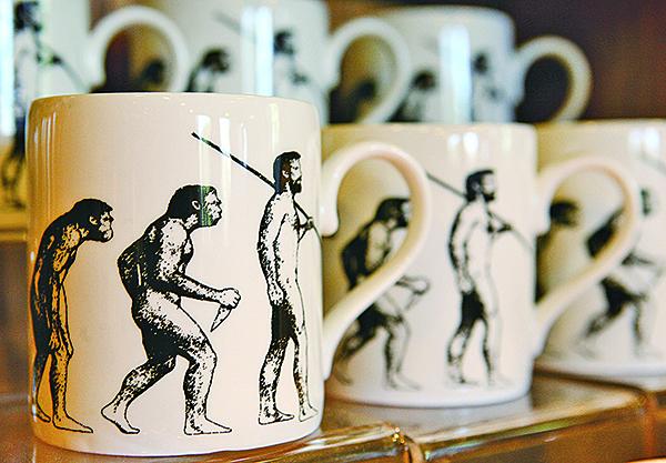 世紀大辯論(二)  達爾文vs.愛因斯坦