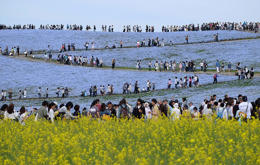 日媒:中國九月中起限制訪日旅遊 疑阻資金轉移