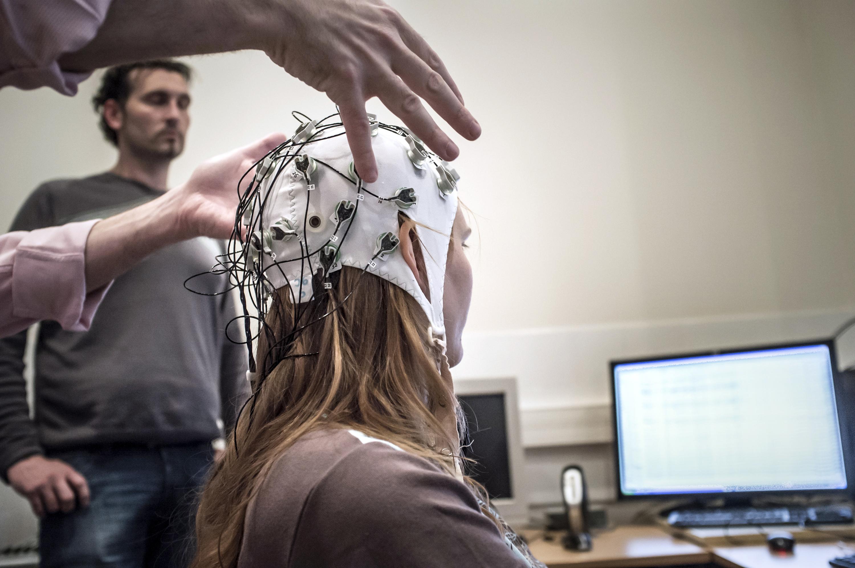 大腦神經細胞可自動識別熟人