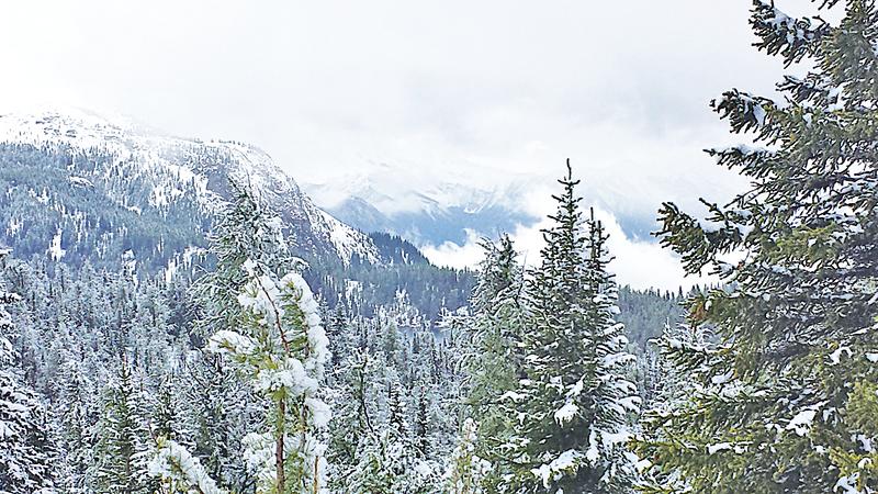 陽光谷以雪、松、湖泊而聞名於世。