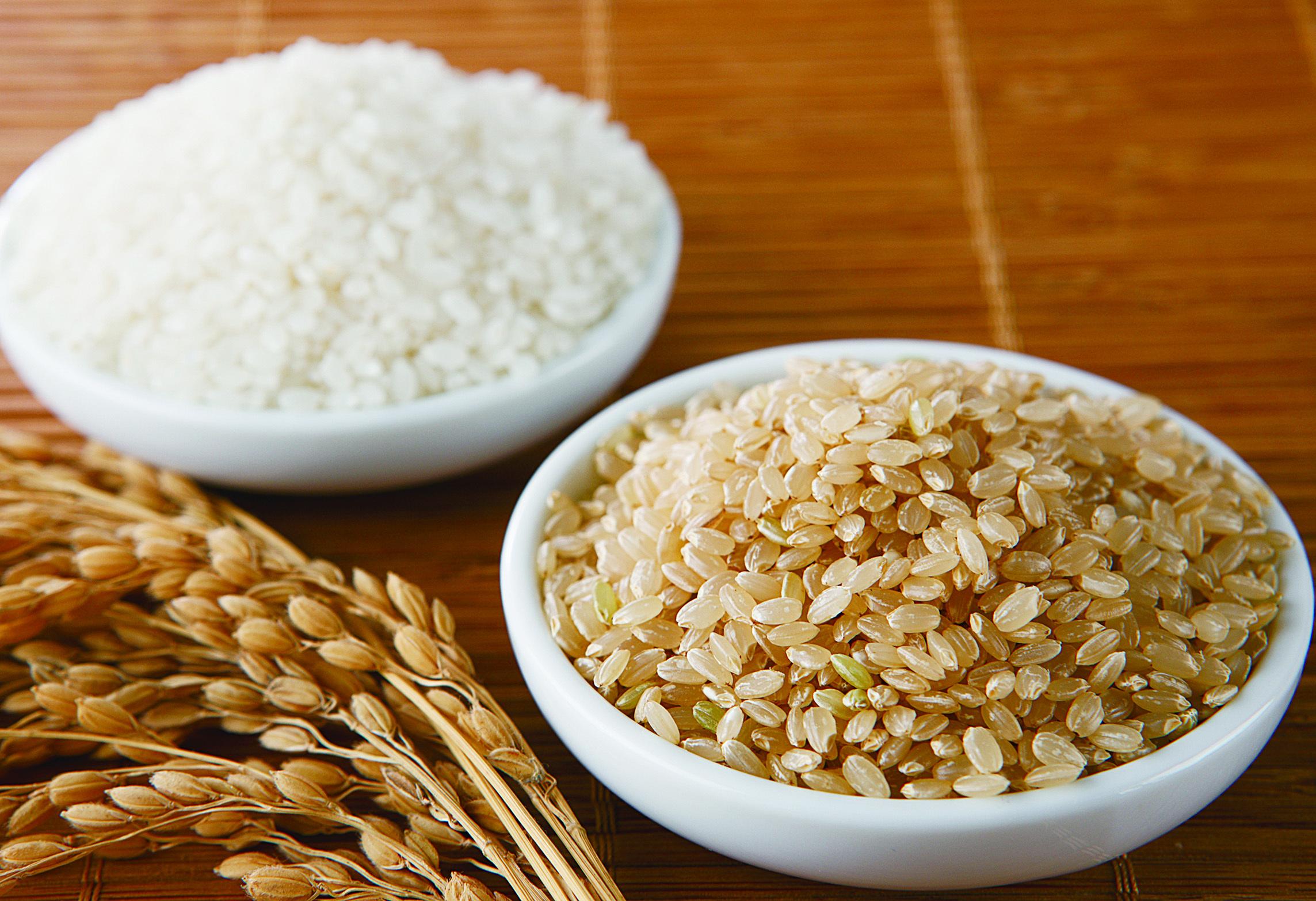 日本的飲食文化 醫食同源在日本 玄米藏玄機  白米實為粕