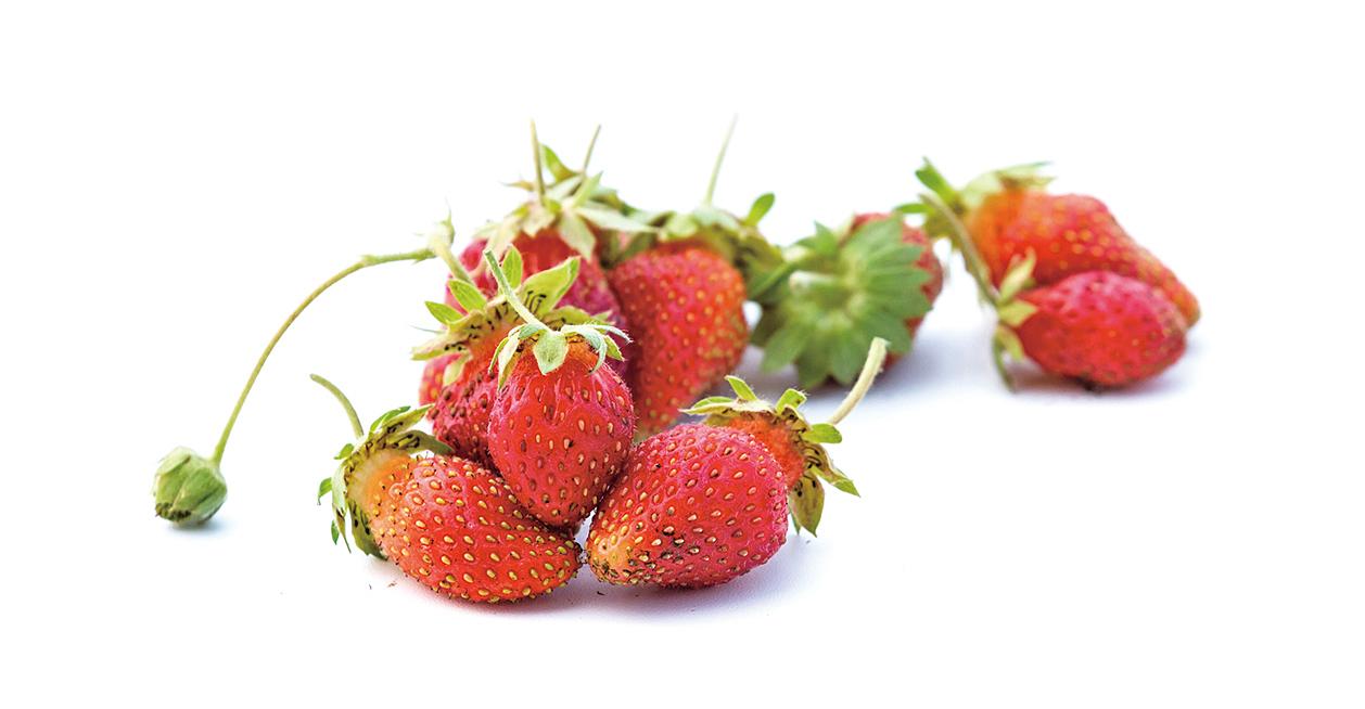 農藥殘留最多的水果和蔬菜? 看2017年榜單