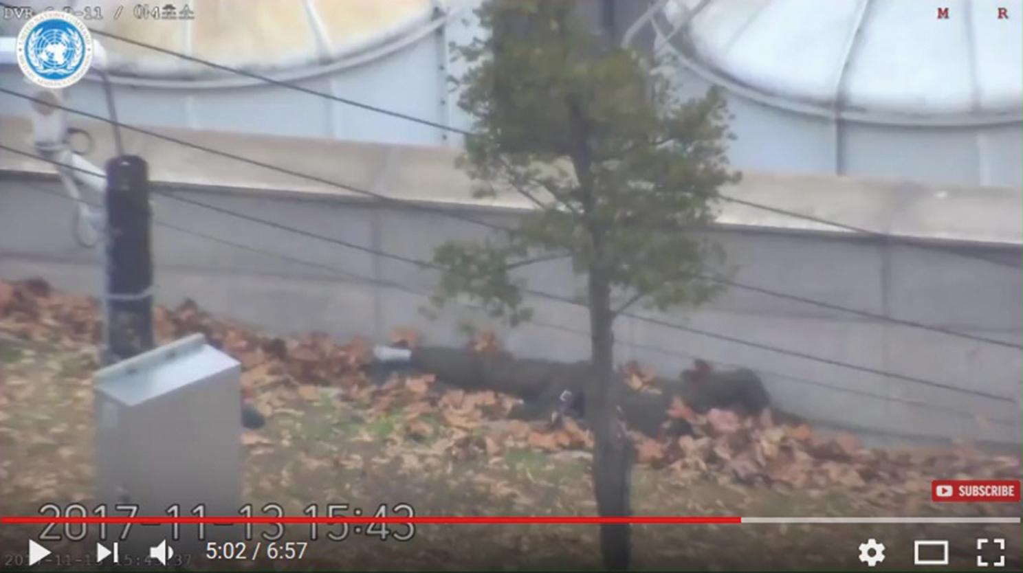 金正恩格殺令失靈 又一北韓士兵投奔南韓