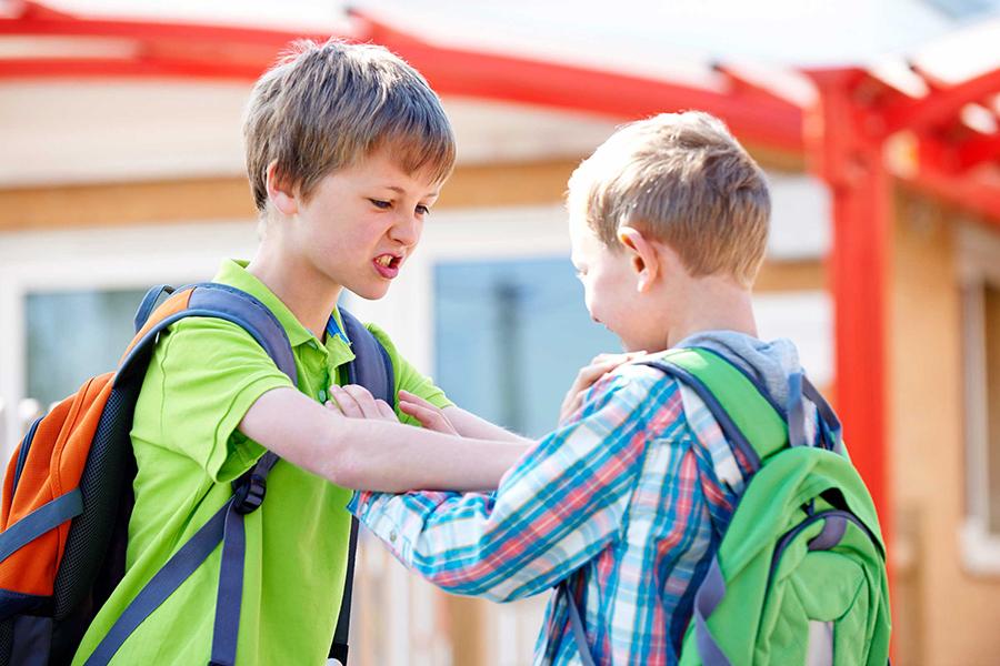 兒童攻擊行為源於基因 受環境影響