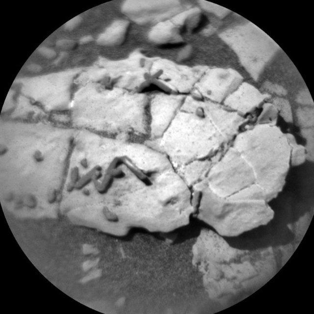 外星生物化石?火星驚現不尋常棒狀物
