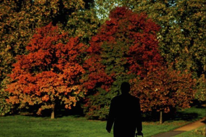 「孤獨症」蔓延全球 「孤獨大臣」能否解憂