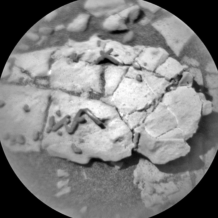 外星生物化石?火星現不尋常棒狀物