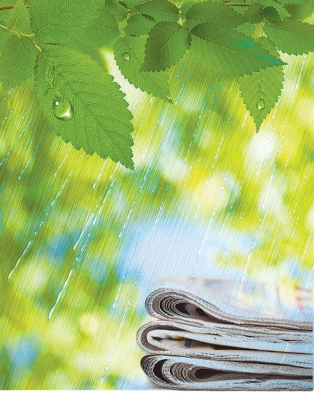 讀報在梅子黃時的雨中