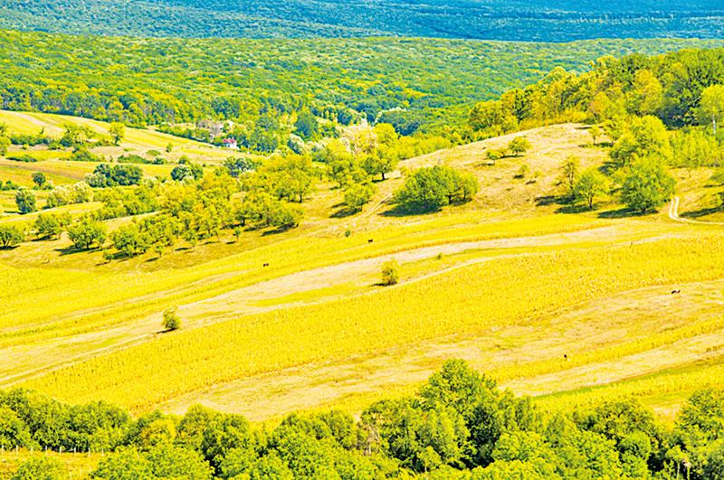 (右圖)摩爾多瓦充滿田園風光,風景如畫。