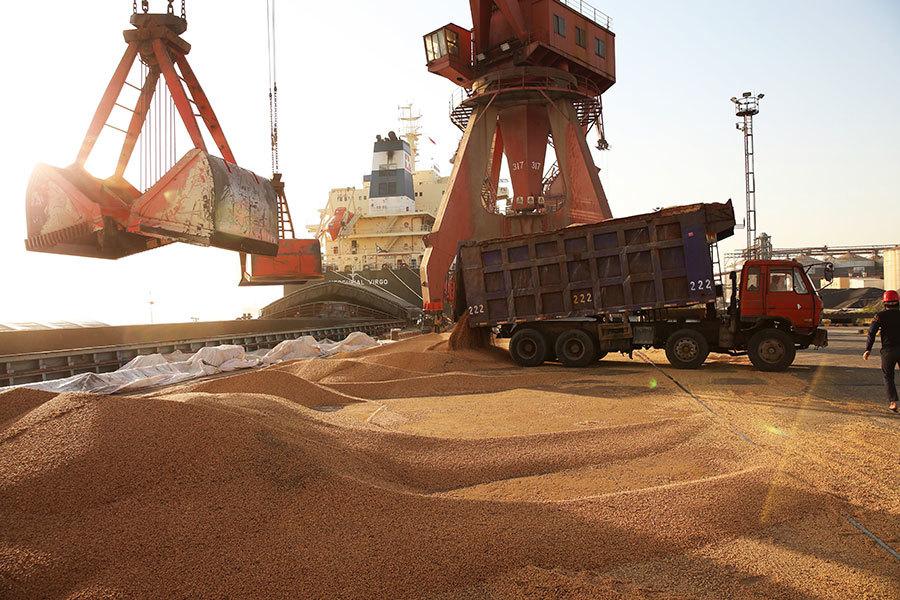 中共不買有人買 進口商趁低價搶購美國大豆
