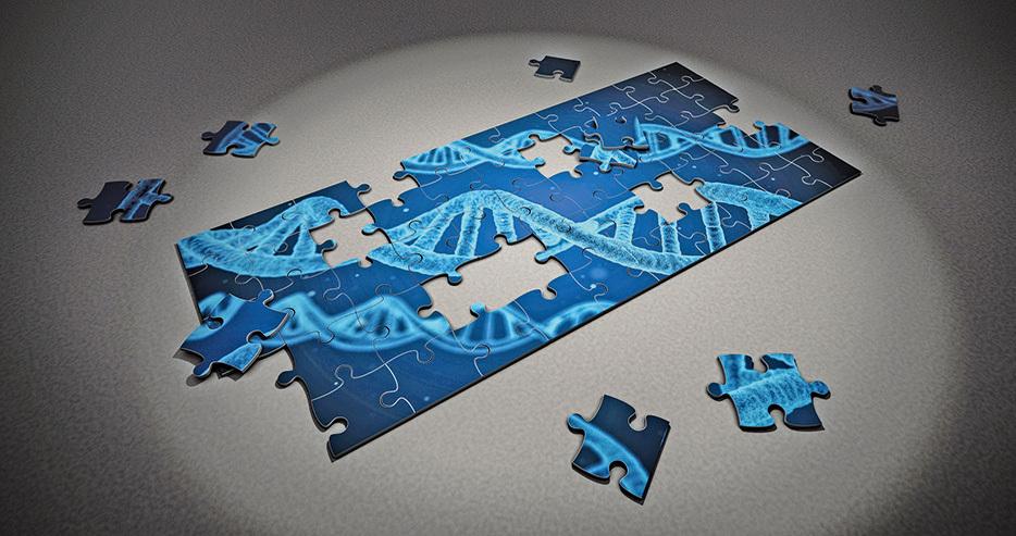《自然》撤回質疑Crispr基因編輯技術論文