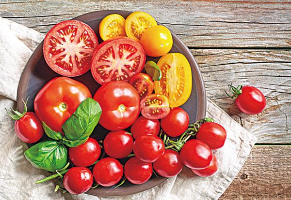 補氣才能養生 這4種食物最給力
