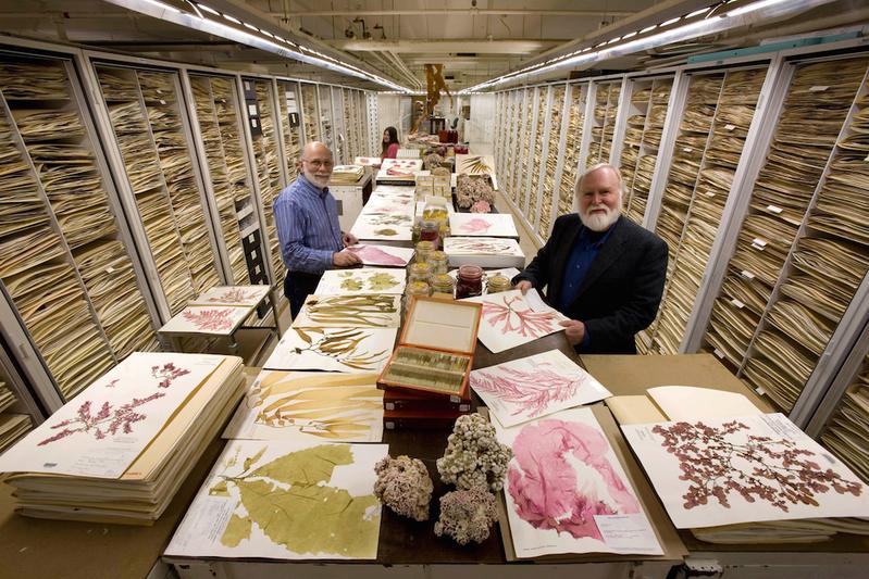 你從未見過的自然史博物館保管室
