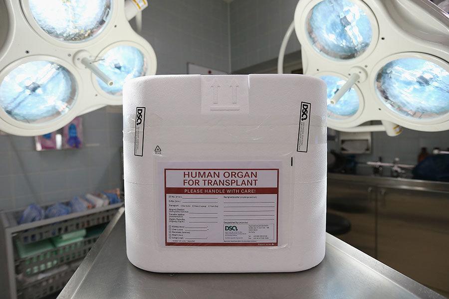 新西蘭醫學會籲停止培訓中國器官移植醫生