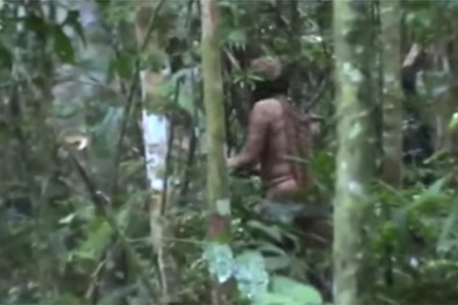 「亞馬遜野人」獨活22年 拒絕與外界接觸