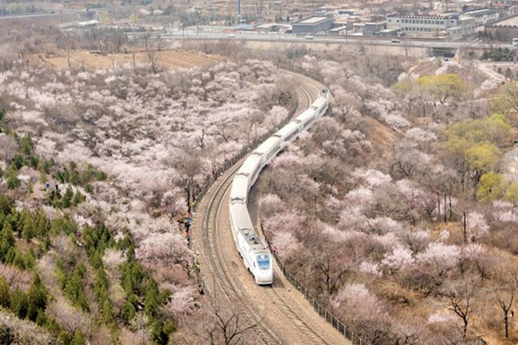 俄媒:中國高鐵涉腐敗不適合俄國