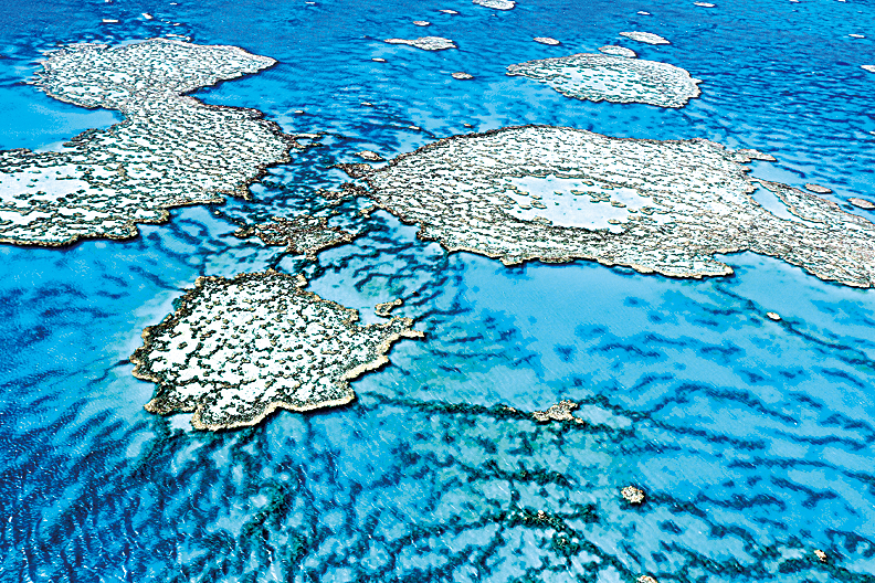 大堡礁的空中俯瞰圖。 (AIMS/AFP)