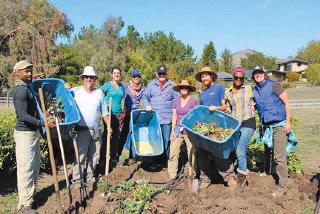 美國有農夫看好中藥材在當地的市場潛力,開始栽種中草藥。(Chinese Medicinal Herb Farm)